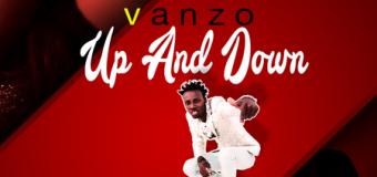 VANZO – UP & DOWN – MARVONI RECORDS _ IKATION RECORDS