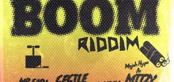 BOOM RIDDIM [FULL PROMO] – RICKY BLAZE