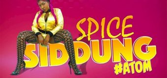 SPICE – SIDDUNG [EXPLICIT & RADIO] – CASHFLOW RECORDS