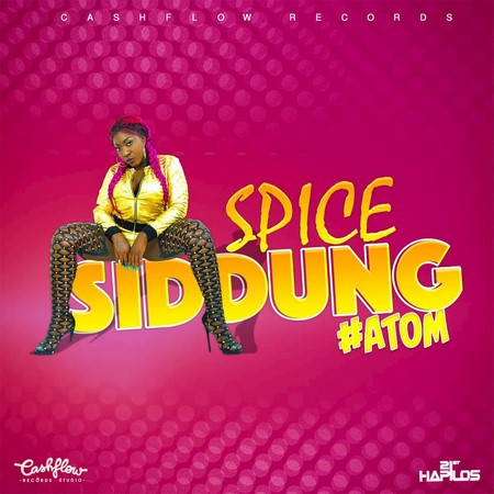 spice-Siddung-artwork