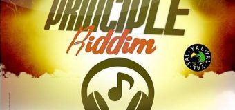 PRINCIPLE RIDDIM [FULL PROMO] – YARD A LOVE RECORDS