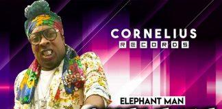 Elephant-Man-Shalama-Shanda