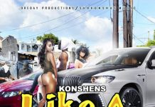 KONSHENS-LIKE-A-DOG-ARTWORK