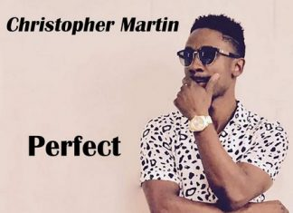 chris-martin-perfect-