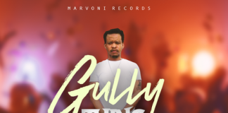 Chase-Cross-Gully-Thing-cover