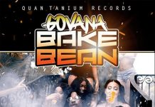 GOVANA-BAKE-BEAN-ARTWORK