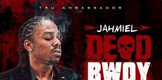 Jahmiel-dead-bwoy-leroy