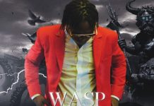 Wasp-No-Love