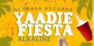 alkaline-YARDIE-fiesta