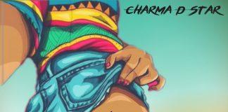 Charma-D-Star-Wire-Waistline