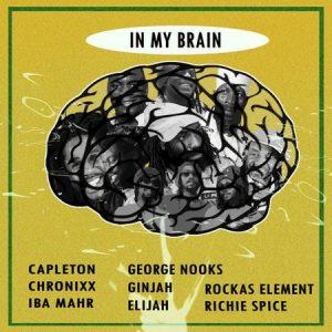 In My Brain Riddim