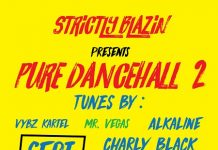 Pure-Dancehall-2-mixtape