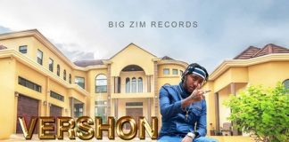Vershon-Success
