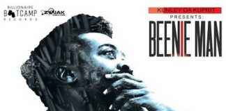 Beenie-Man-Leave-It