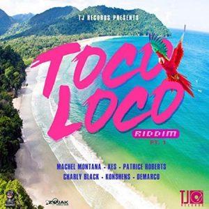 Toco-Loco-Riddim-cover-300x300 TOCO LOCO RIDDIM [FULL PROMO] - TJ RECORDS