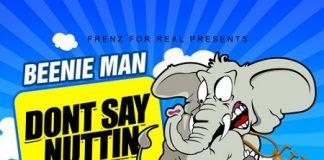 BEENIE-MAN-DONT-SAY-NUTTIN