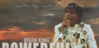 RYGIN-KING-POWERFUL