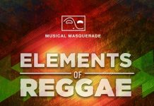 Elements-of-Reggae-Cover