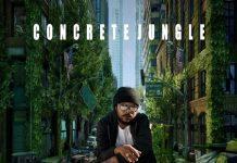 Fyakin-Concrete