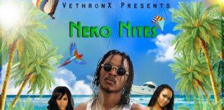 Neko-Nites-High-Peak-artwork