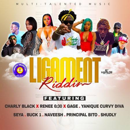 LIGAMENT-RIDDIM-COVER LIGAMENT RIDDIM [FULL PROMO] - MULTI-TALENTED MUSIC