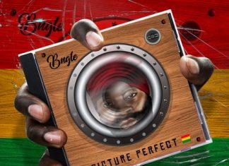 bugle-picture-perfect