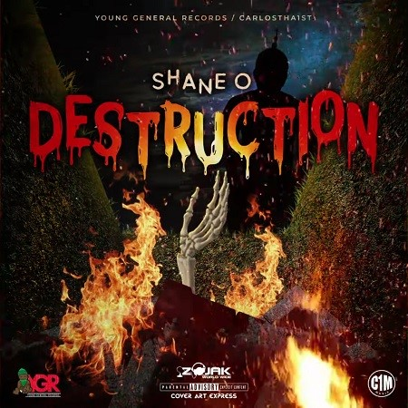 shane-destruction