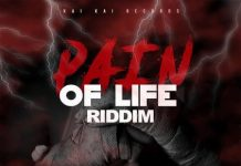 Pain-Of-Life-Riddim-cover