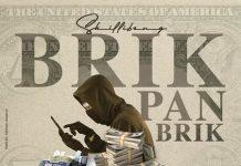 SKILLIBENG-BRIK-PON-BRICK
