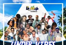 dj-milton-under-vibes-artwork