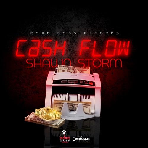 SHAWN-STORM-CASH-FLOW