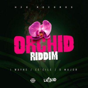 Orchid-Riddim