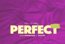 Shani-Rudeboy-Perfect