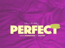 Shani-Rudeboy-Perfect
