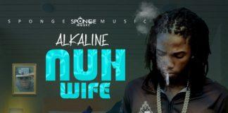 ALKALINE-nuh-wife-