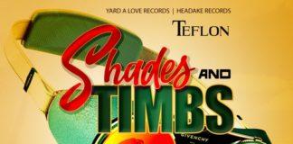 Teflon-shades-&-timbs