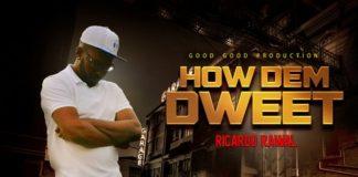 Ricardo-Rawal-How-Dem-Dweet