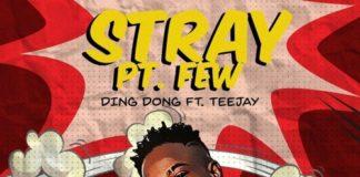 ding-dong-teejay-stray