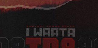 IWaata-Tr88