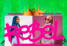 Shenseea-Ft-Stefflon-Don-Rebel-Remix-artwork
