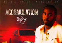 Teejay-Accumulation-artwork