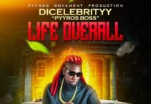 DiCelebrityy-Life-Overall