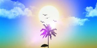 Summer-Vibes-Riddim