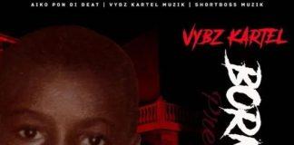 Vybz-Kartel-Born-Fi-Dis